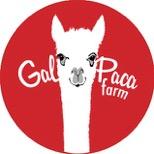 Galpaca Farm logo